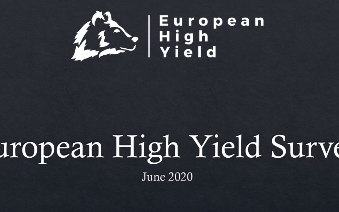 European High Yield June Survey – Results!