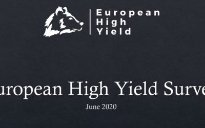 European High Yield June Survey