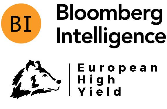 European High Yield Survey Q1 2021